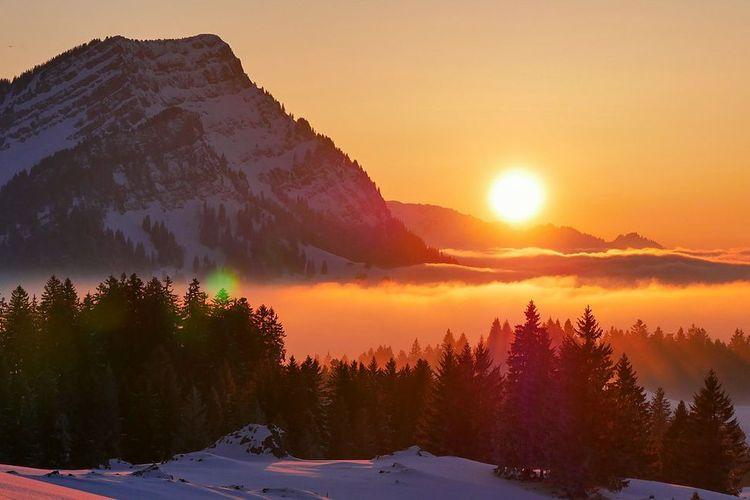 Tolligriita Appenzell-Ausserrhoden Inserat