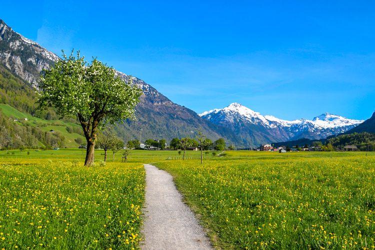 Flirten Glarus Nord Suche