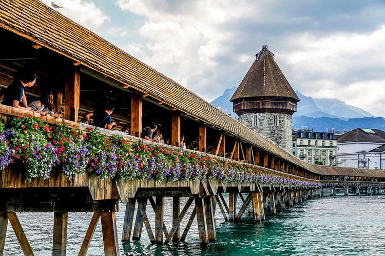 Tolligriita Luzern Community